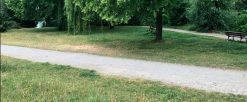 Travaux d'entretien des espaces verts – Mail du Bon Pêcheur