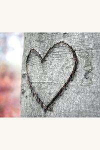 Coeurs d'eaux, coeurs d'arbres (conte) – Festival Contes et légendes